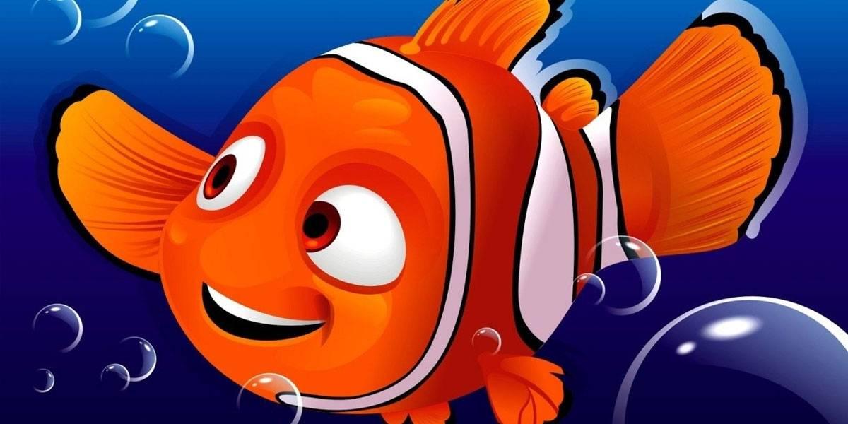 Buscando a Nemo: científicos secuencian el genoma del pez payaso