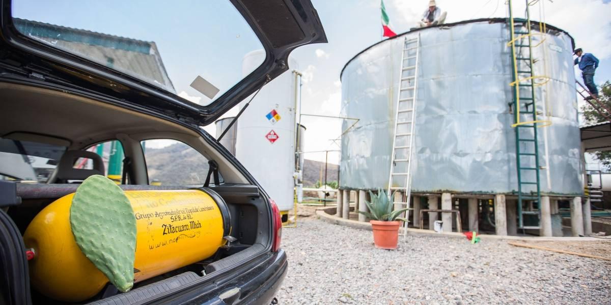 En México, ya hay camiones circulando con gas de nopal