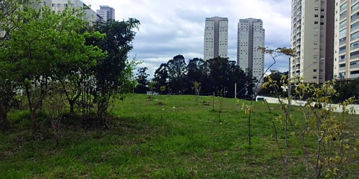 Tognato contesta abandono em área de São Bernardo