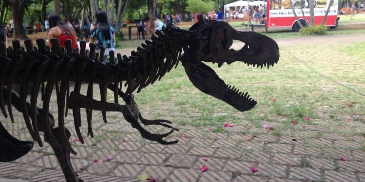 Exposição conta a história dos dinossauros em Santo André