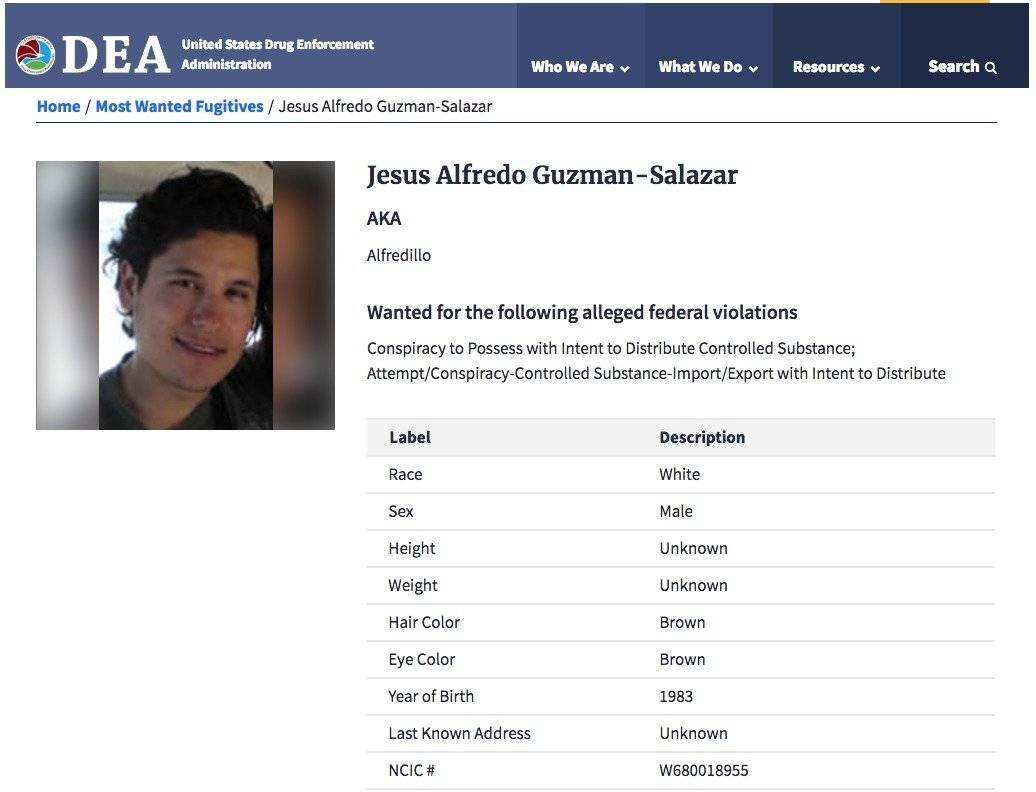 Ficha de la DEA