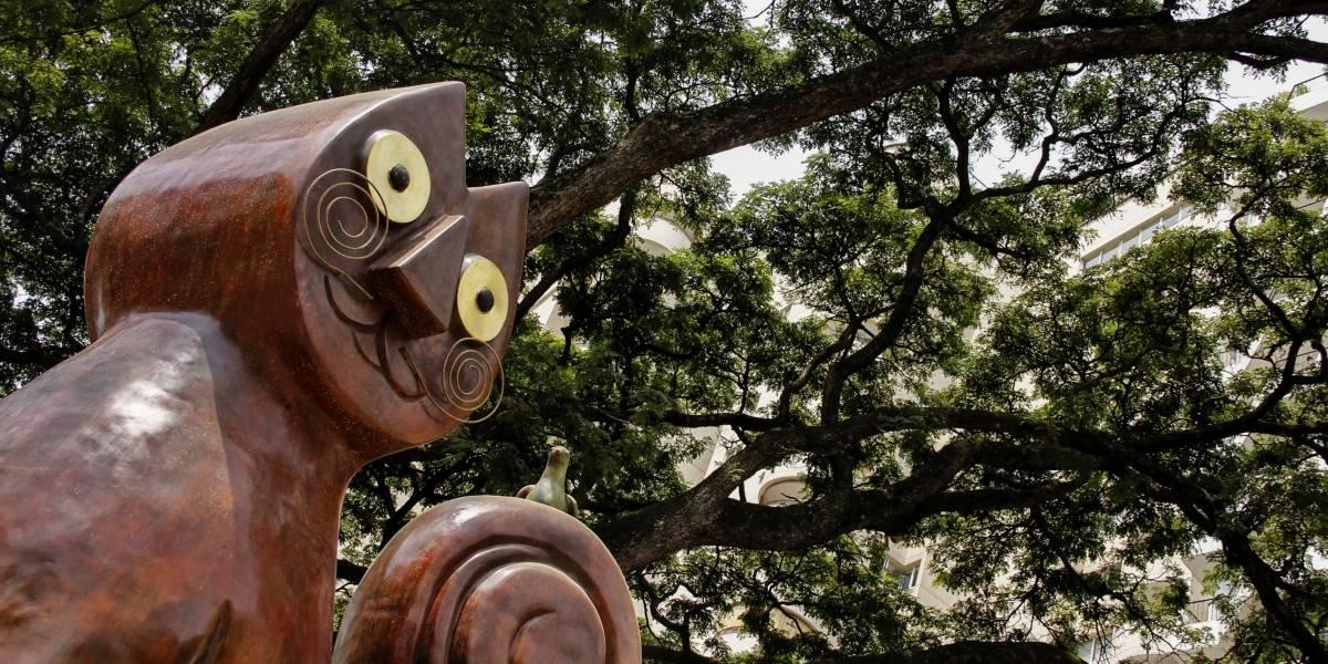 Gobernación del Valle premiará la 'Vida y Obra' de artistas mayores de 65 años