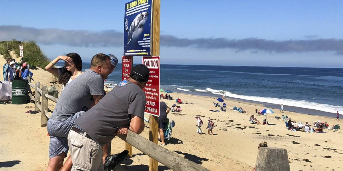 Tiburón ataca a joven en playa de California