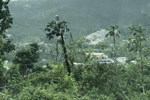 Estado de la infraestructura de distribución en Cayey. Suministrada