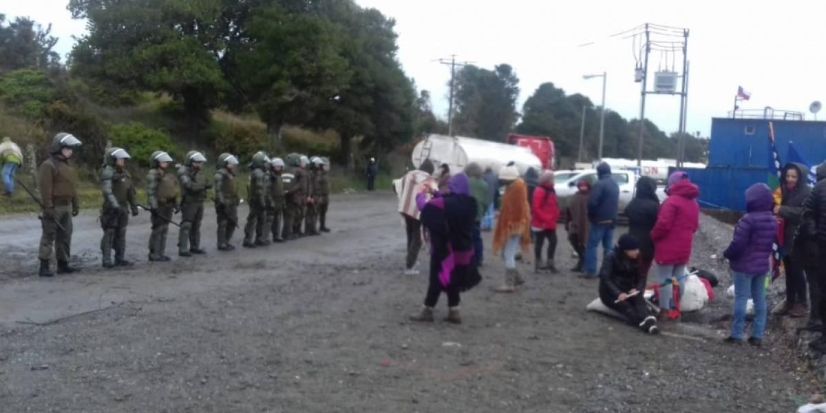 """En medio de las festividades realizaron la maniobra: Greenpeace denunció """"operación encubierta"""" descarga de salmones muertos"""