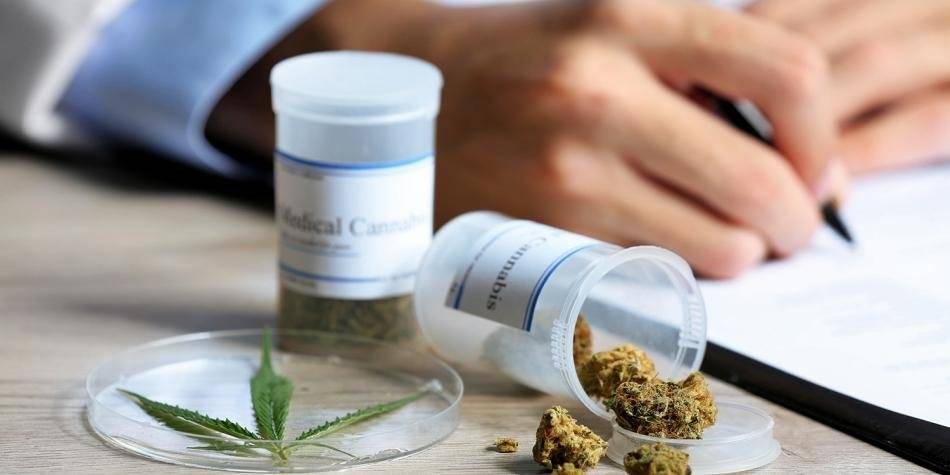 La marihuana ha ido ganando terreno en la eliminación de posturas prohibicionistas. Cortesía.