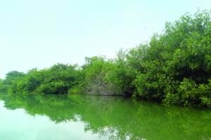 Seis lugares para visitar en tuxpan