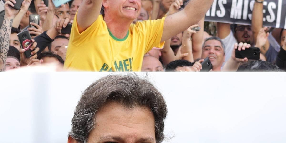 Ibope: rejeição a Bolsonaro varia de 41% para 42% e a Haddad sobe de 23% para 29%