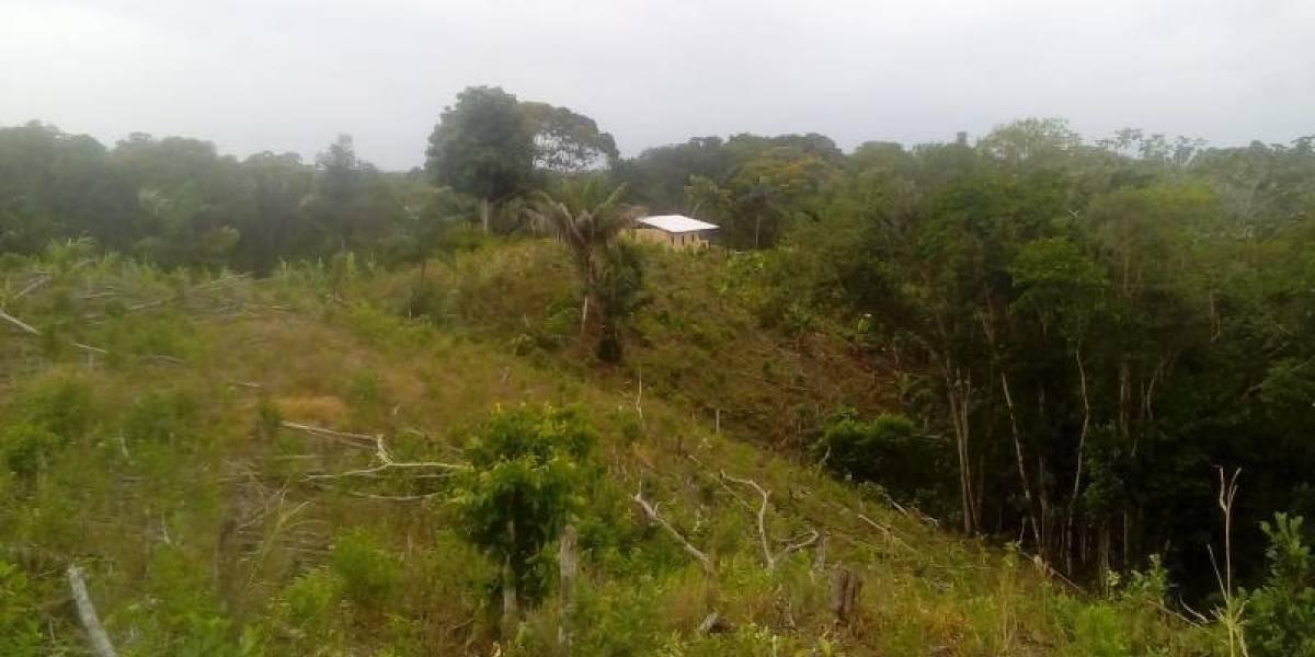 FOTOS: La casa donde se refugiaba 'Guacho' cuando fue herido