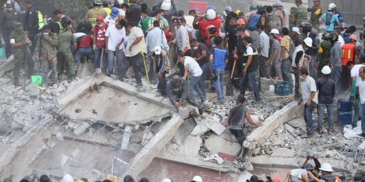 '¿Por qué se cayó mi edificio?': la corrupción es más letal que un sismo
