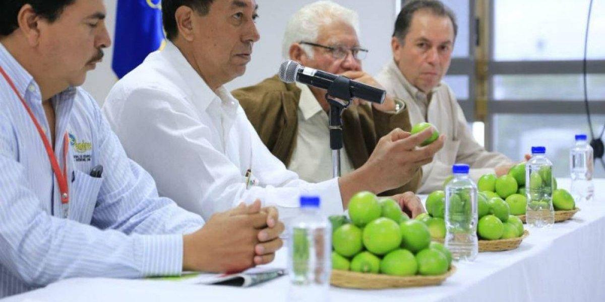 Jalisco le pondrá limón a los negocios