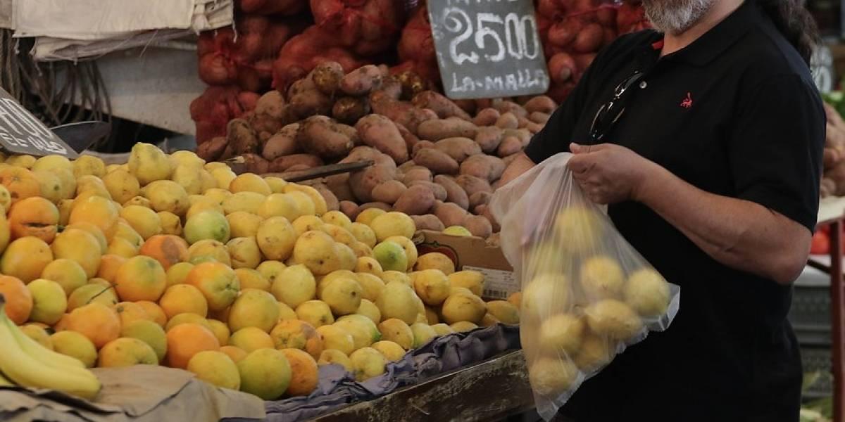 Producción orgánica en auge: Chile y Brasil firmaron memorándum de entendimiento para abrir mercado de alimentos