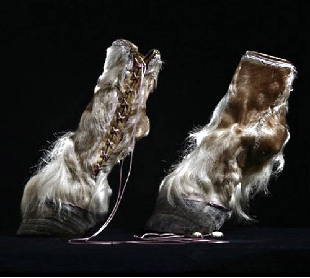 Iris Schieferstein y sus zapatos taxonómicos