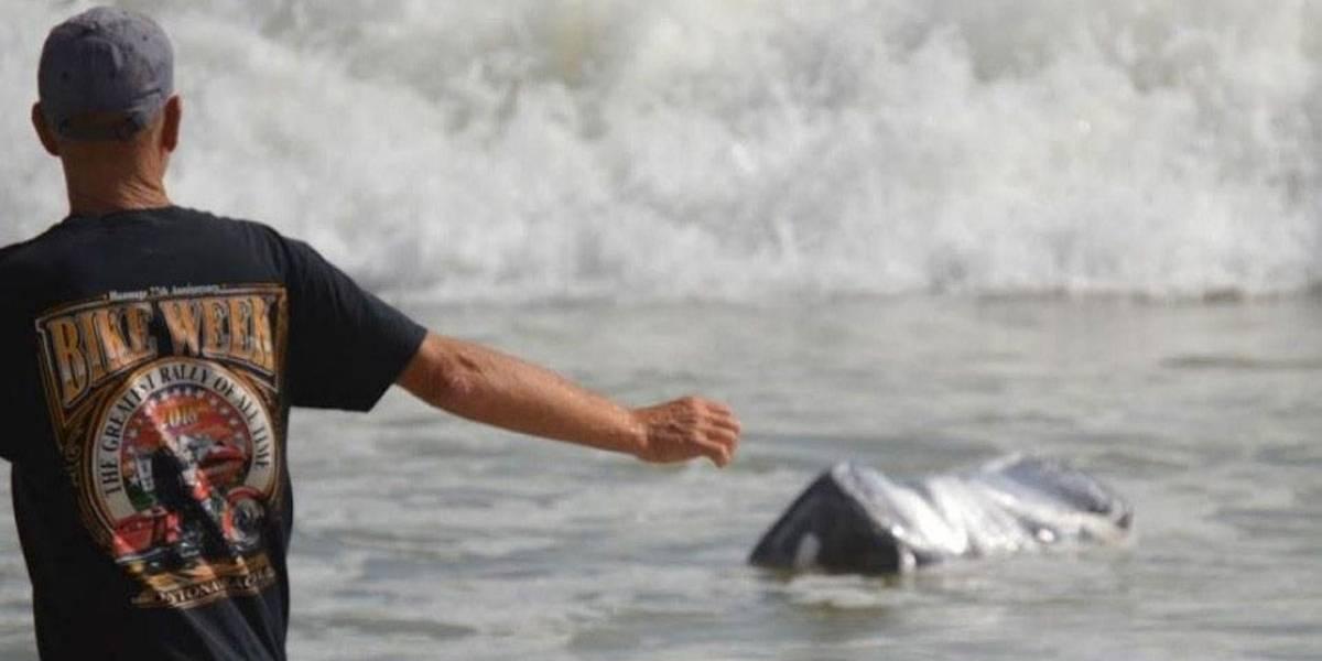 Pacotes de maconha aparecem boiando em praia na Flórida