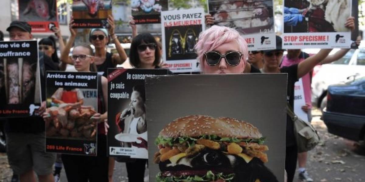 Carniceros en Francia contratan a guardias para protegerse de ultraveganos