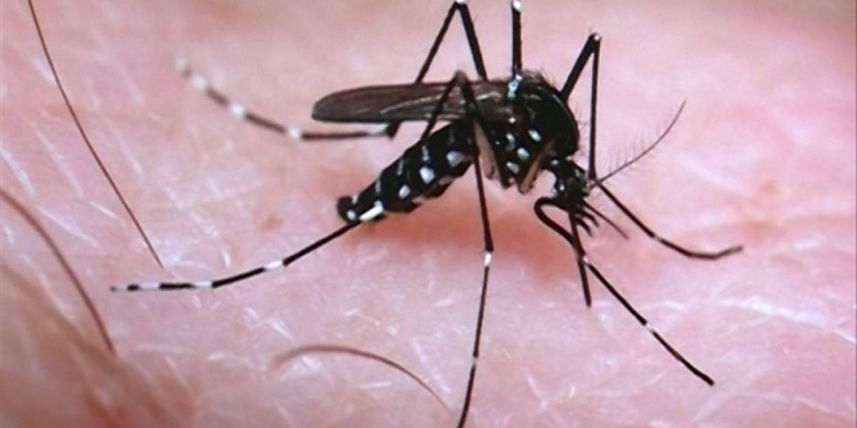 El virus del Zika podría ser útil para combatir este terrible tipo de cáncer