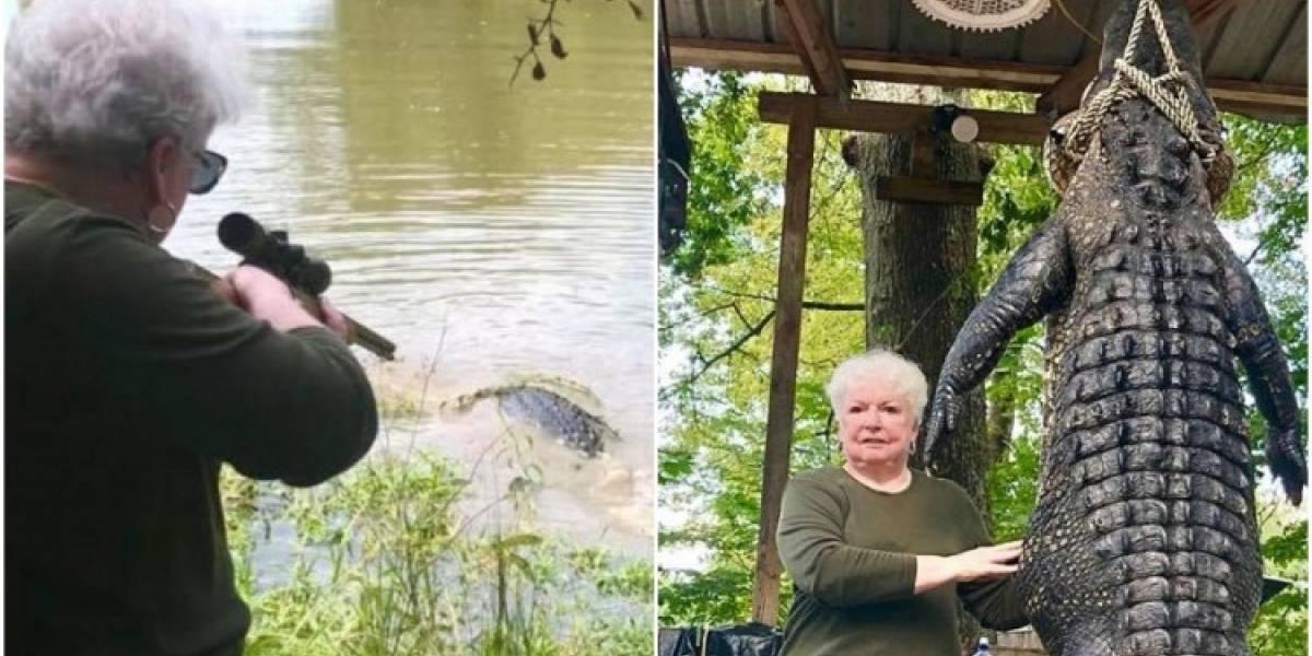 Anciana mató a caimán de 263 kilos luego de que este se comiera a su pony