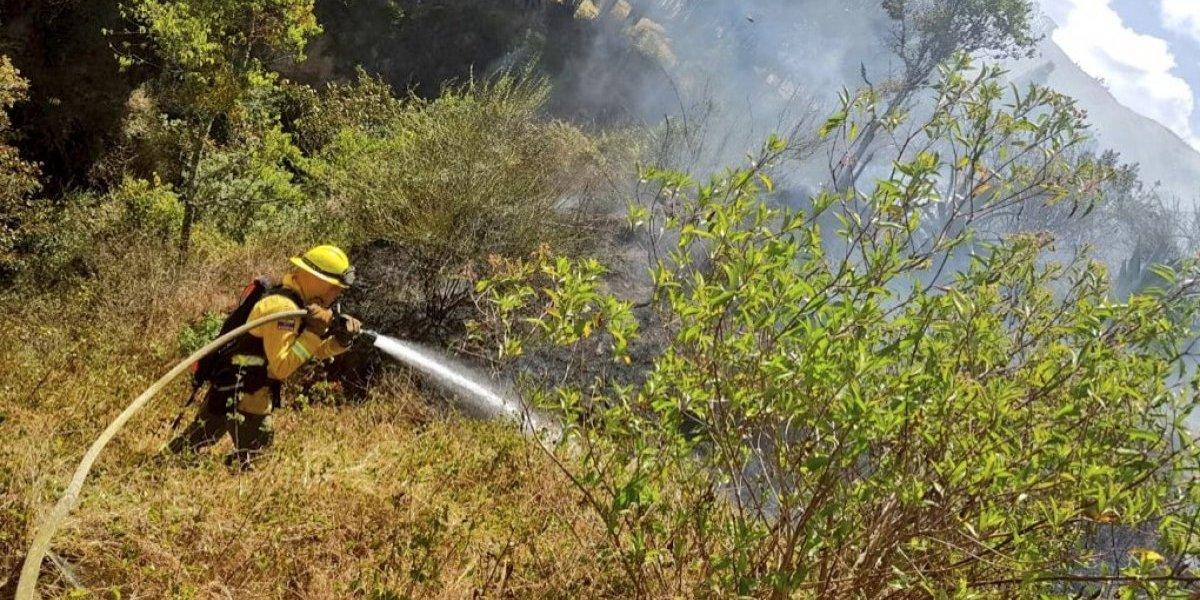 Quito: Se registraron dos conatos de incendios