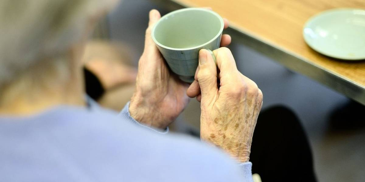 Proponen investigar aumento en casos de violencia contra envejecientes
