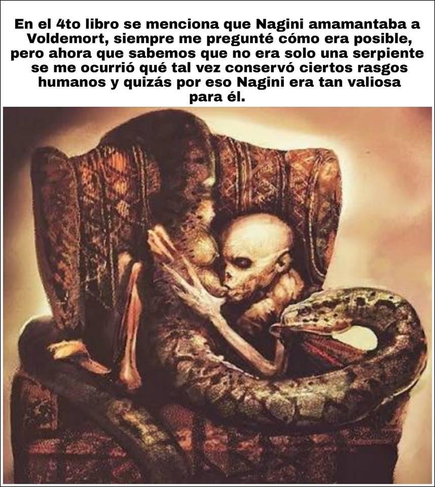 Gran shock: Nagini, la gran serpiente de Voldemort en Harry Potter, fue humana revela el tráiler de Animales Fantásticos