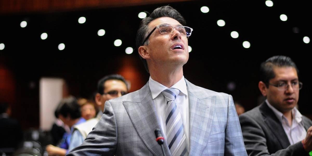 """Sergio Mayer pide salvar a la """"vaquita amarilla"""" de la extinción"""