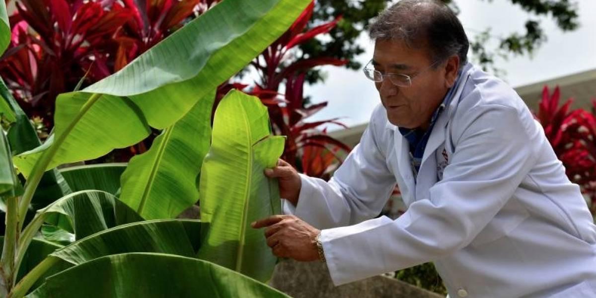 Ángel Llerena espera romper la racha de europeos y norteamericanos en el Nobel
