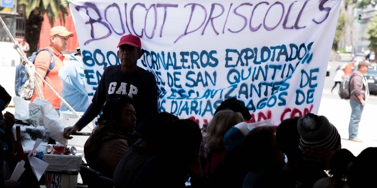 Jornaleros de San Quintín alistan boicot mundial