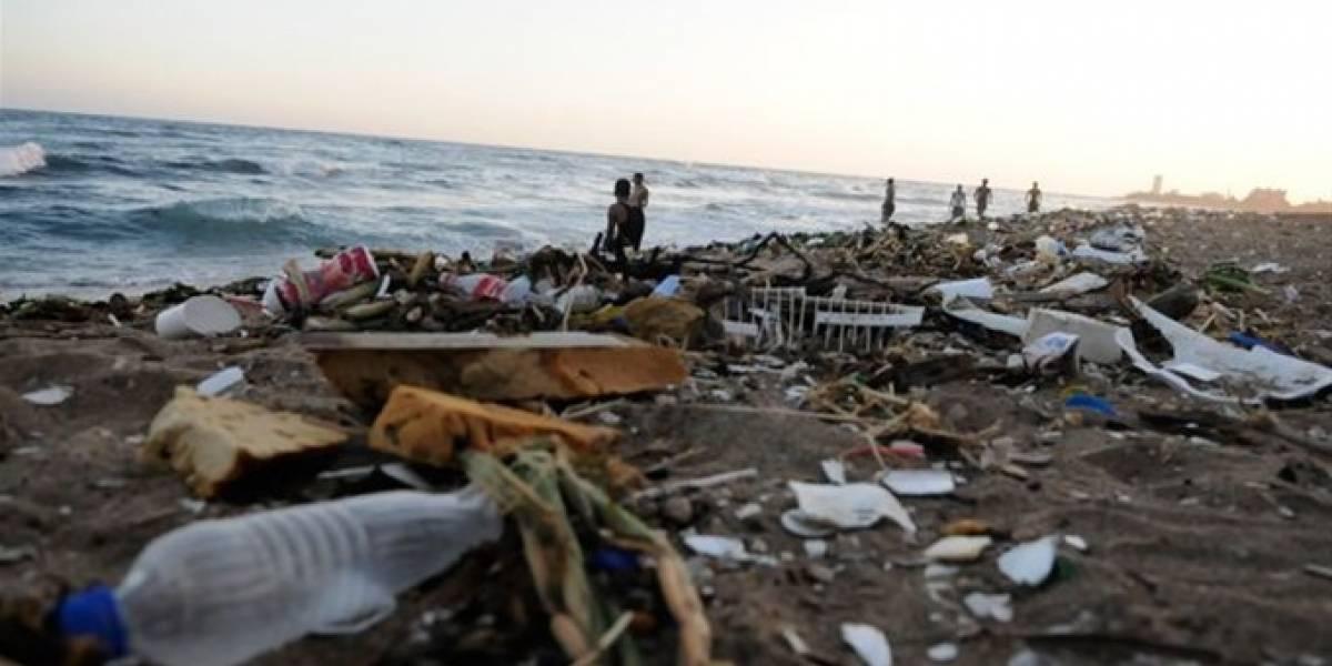 Recogen más de cinco mil libras de desechos en Playa de Güibia