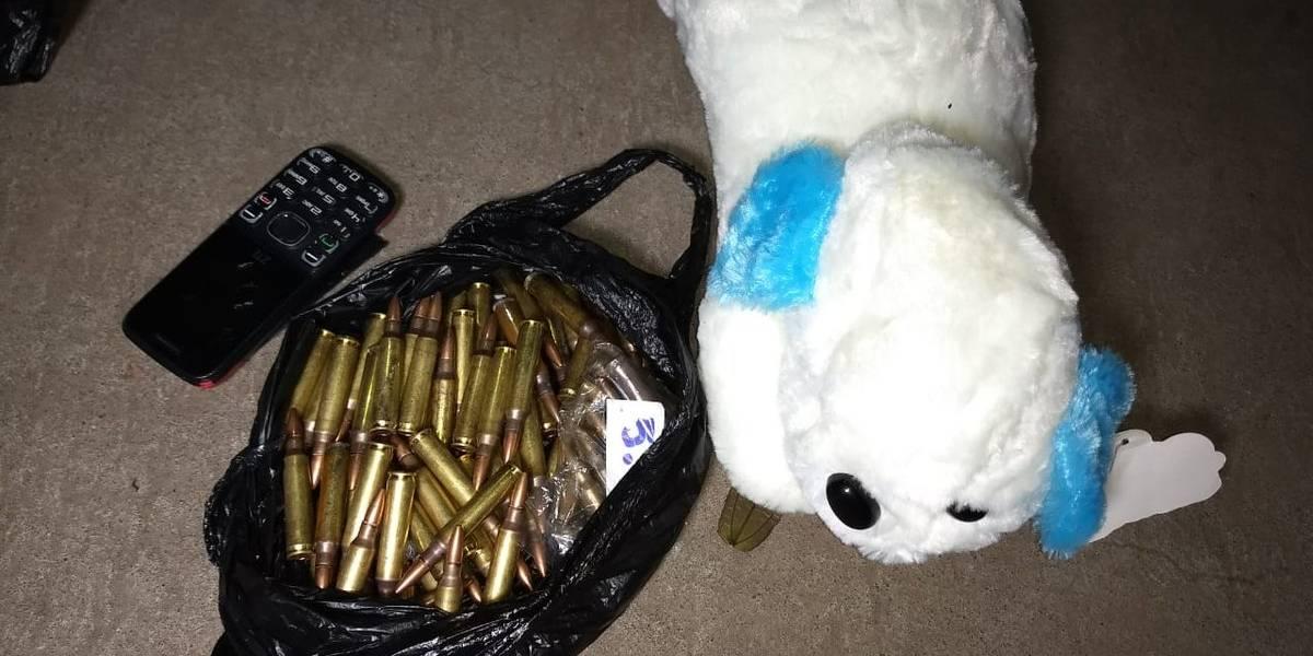 Oso de peluche ocultaba municiones para fusil en el Cenma