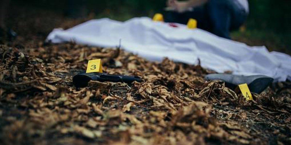 """El """"cuerpo"""" que encontraron fue la pista clave: el insólito operativo policial que terminó con una víctima inesperada"""