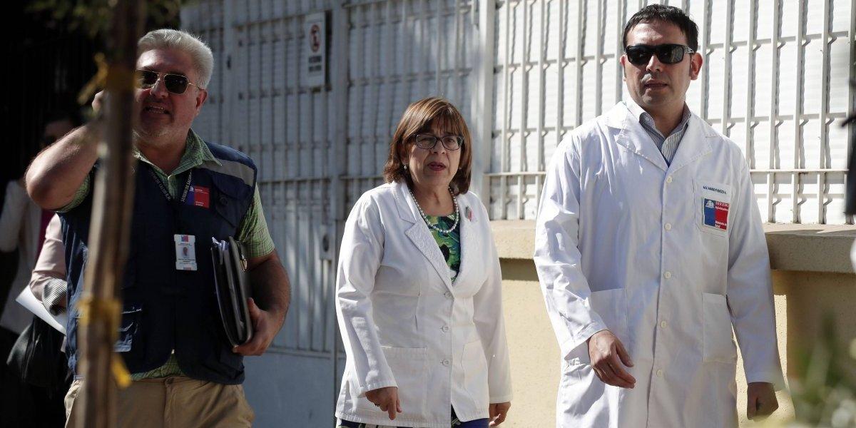 Región Metropolitana: 22 casos de murciélagos con rabia se han registrado este año