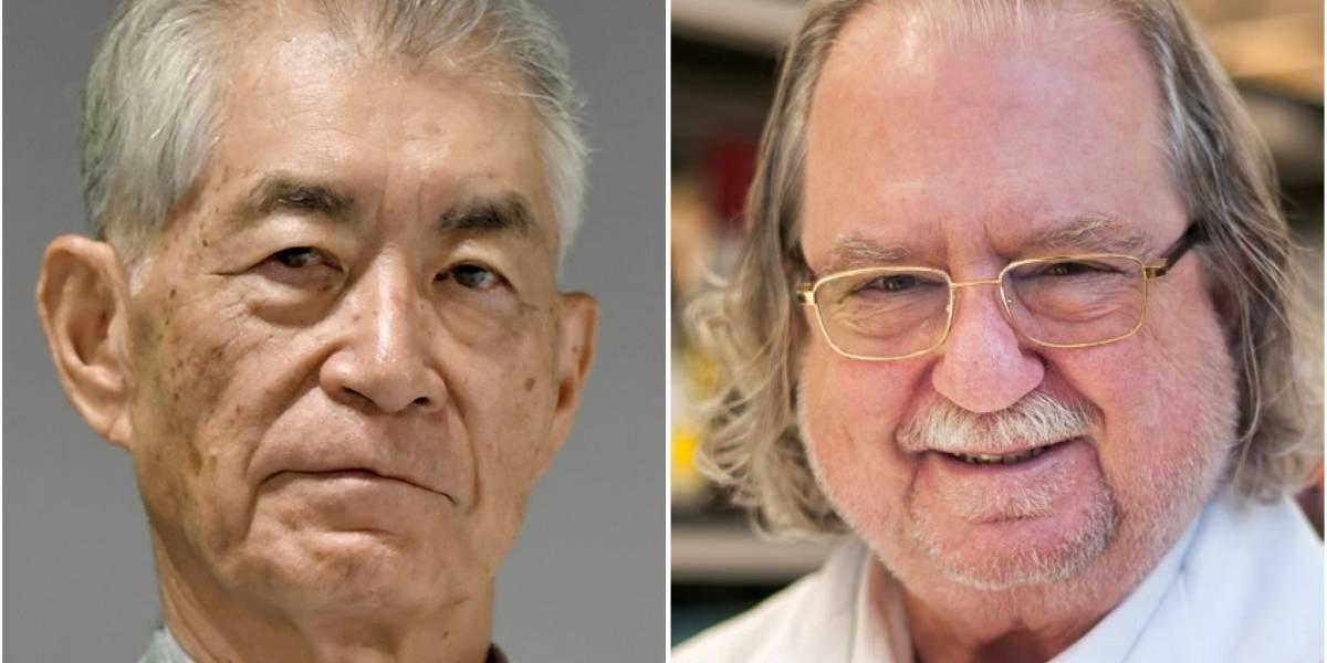 Nobel de Medicina premia americano e japonês por avanços no combate ao câncer