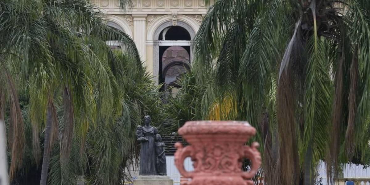 Museu Nacional mantém sua capacidade de fazer ciência, diz diretor