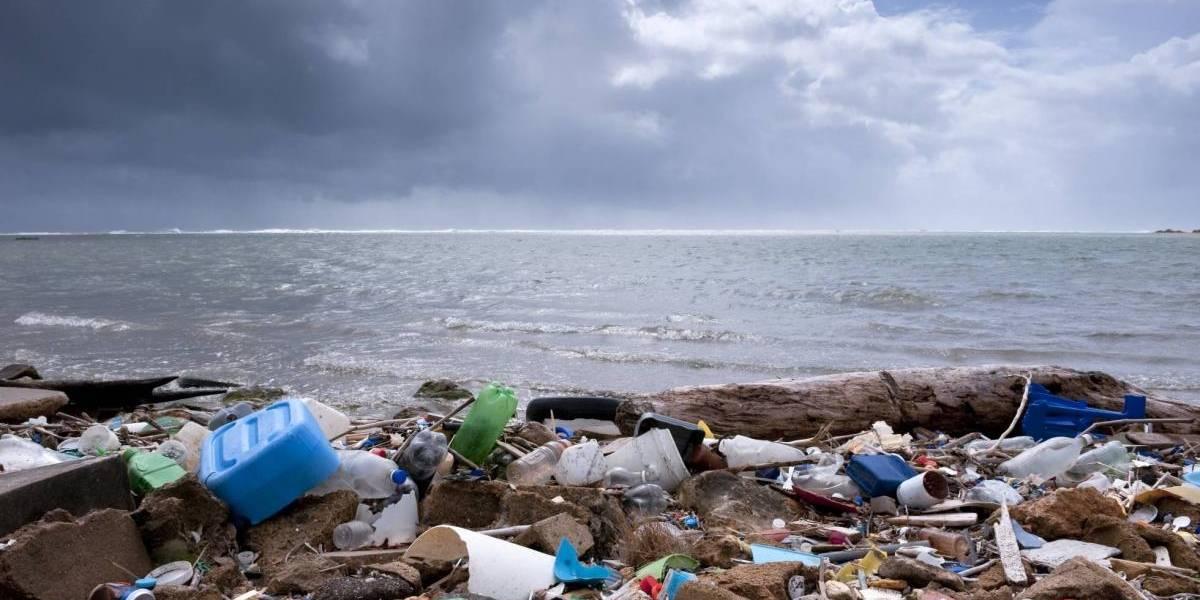 El fin de la era del plástico: Greenpeace busca erradicarlo en todas sus formas con la campaña #ChileSinPlásticos