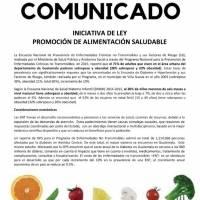 Iniciativa de Ley Promoción de alimentación saludable