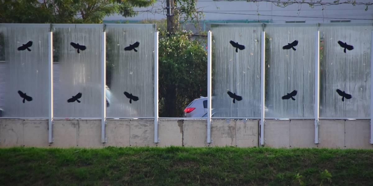 Prefeitura promete trocar vidros de muro da USP até o fim da semana