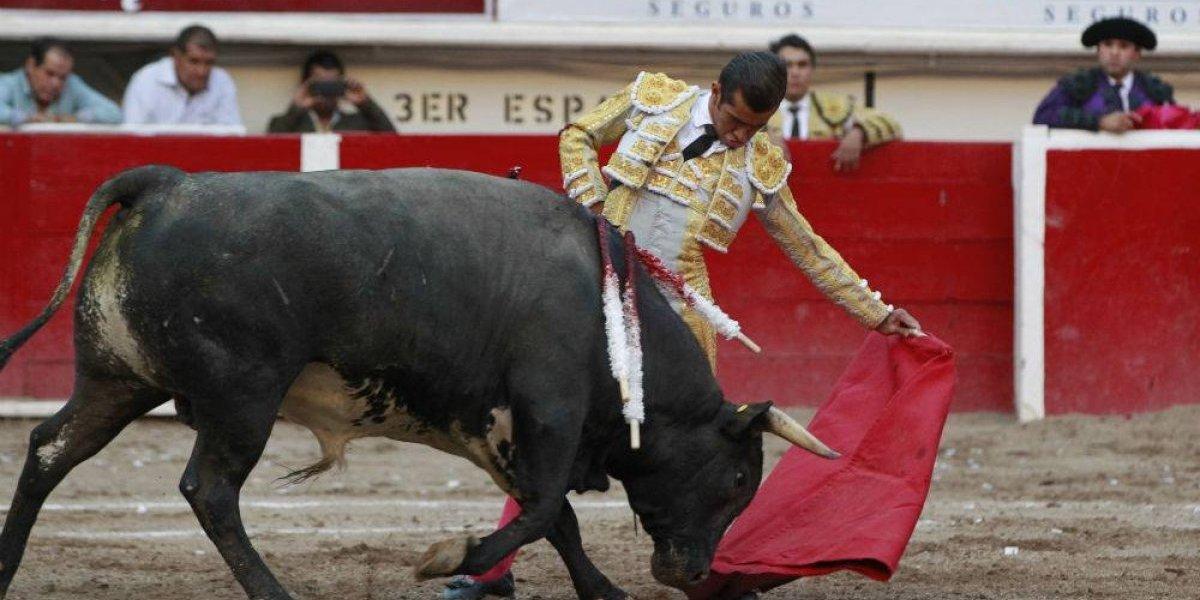 Legisladores del PVEM quieren prohibir corridas de toros en la CDMX