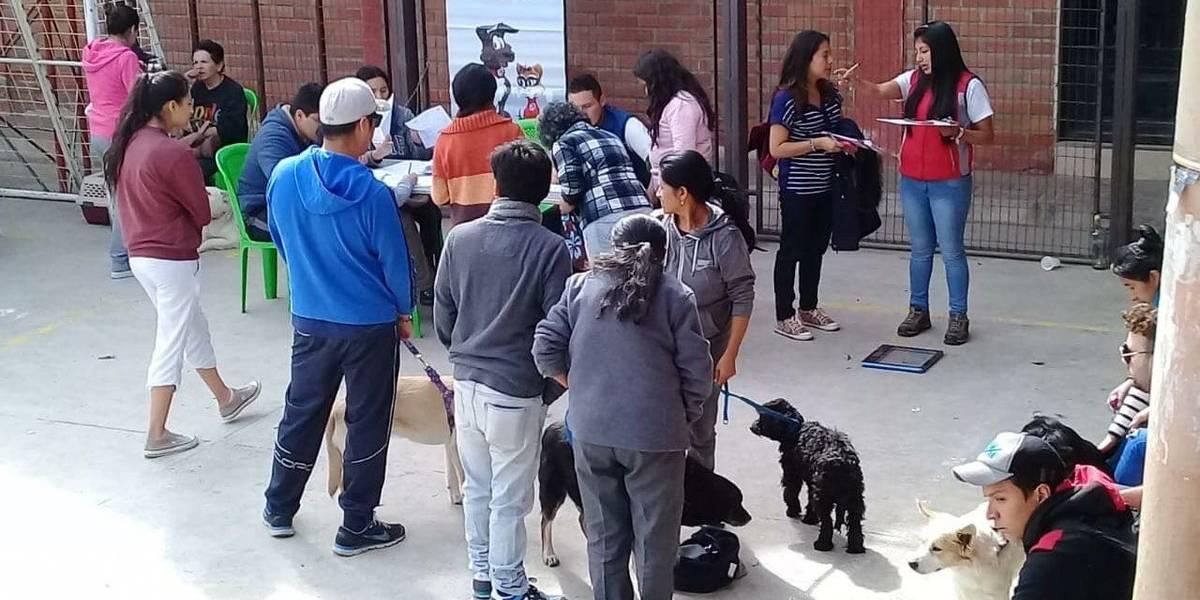 Albergue para animales domésticos en Cuenca funcionaría el próximo año