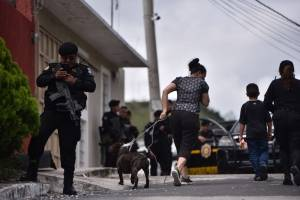 Perro pandillero Anderson Cabrera