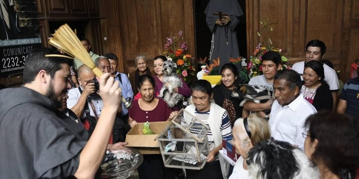 EN IMÁGENES. Mascotas reciben la bendición en la fiesta de San Francisco