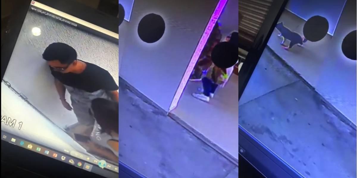 Ladrones ingresaron a un edificio y se llevaron lo menos esperado