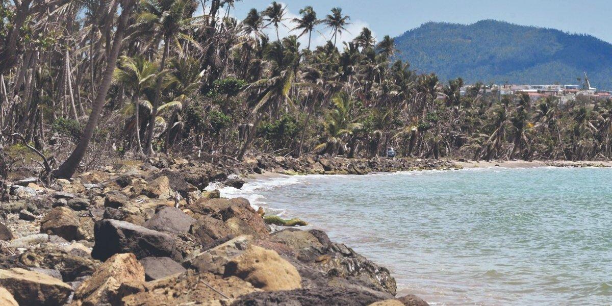 Llegarán millones para estudiar erosión costera