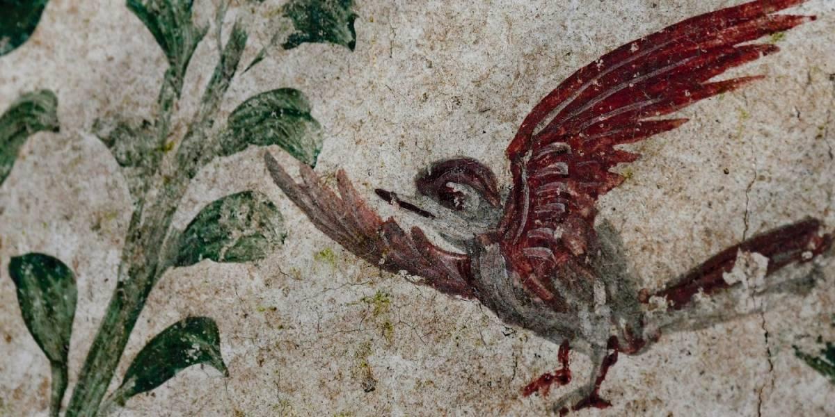 Excavación en Pompeya descubre pintura de jardín