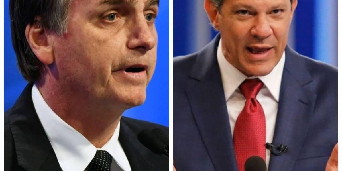 Bolsonaro tem 64% dos votos válidos, Haddad aparece com 36%, diz DataPoder360