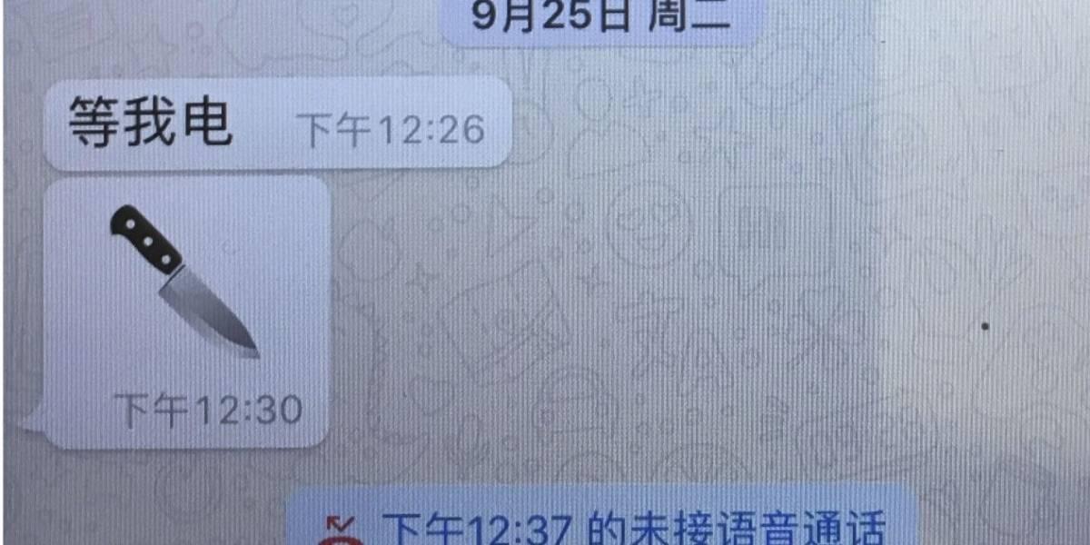 Un emoji de cuchillo, el último mensaje del presidente de Interpol a su esposa