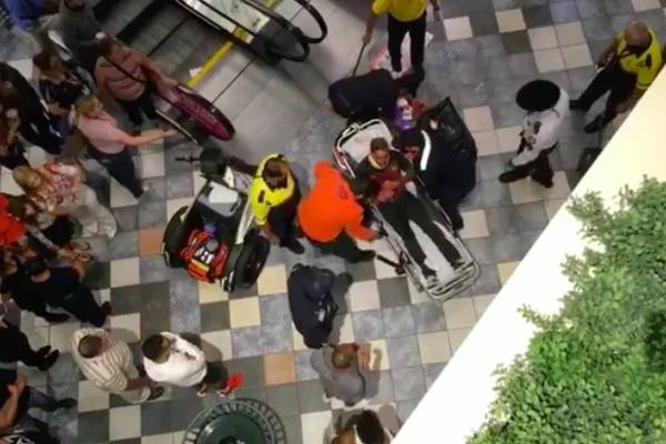 Pelea e incidente en Plaza Las Américas