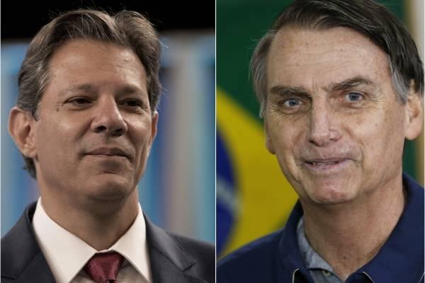 Bolsonaro Haddad Brasil