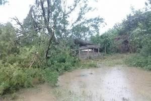 inundacionesporlluvias4-7ac3716e6dbc1692b162408882d22376.jpg