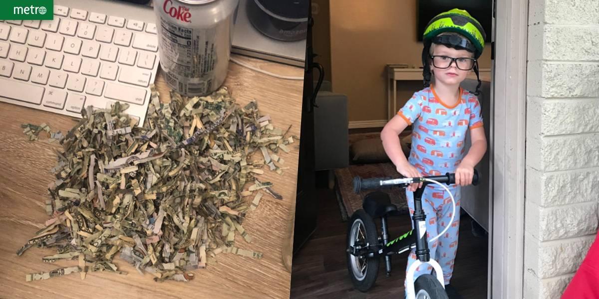 Menino de 2 anos põe mais de mil dólares em triturador de papel