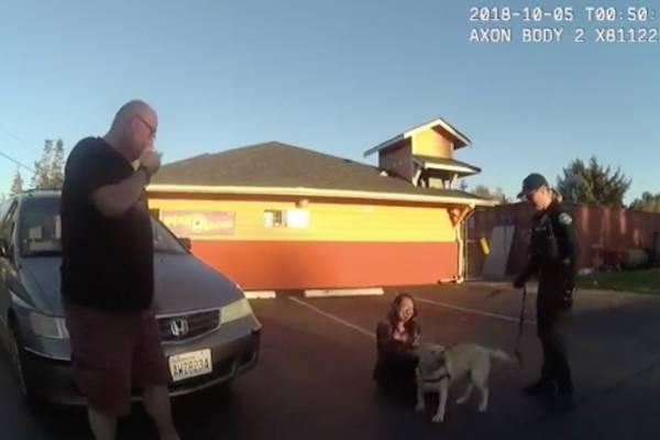 perrito feliz reencuentro familia